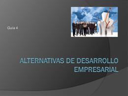 Alternativas de Desarrollo Empresarial