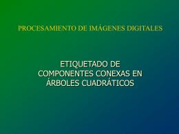 www.sav.us.es