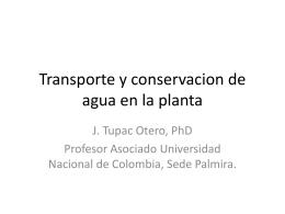 Transporte y conservacion de agua en la planta