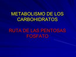 METABOLISMO DE LOS CARBOHIDRATOS RUTA DE LAS …