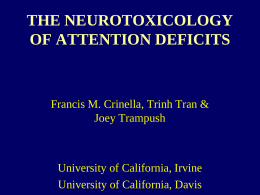 THE NEUROTOXICOLOGY OF ATTENTION DEFICITS