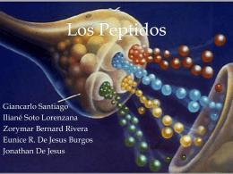 Los Peptidos