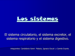 Los sistemas