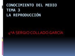 CONOCIMIENTO DEL MEDIO TEMA 3