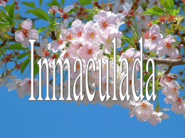 Inmaculada - Mariologia Maria Virgen Guadalupe Pastoral