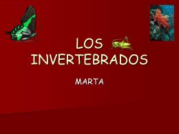 LOS INVERTENRADOS