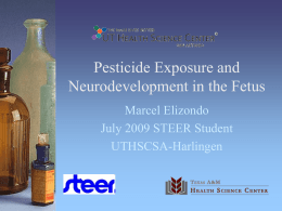 Pesticide Exposure and Neurodevelopment in the Fetus