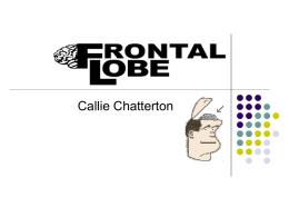 ~frontal lobe - Coe College