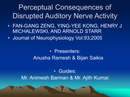 Perceptual Consequences of Disrupted Auditory Nerve …