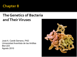Chapter 8 The Genetics of Bacteria and Their Viruses