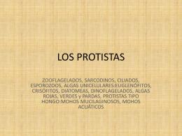 LOS PROTISTAS - Colegio Clermont