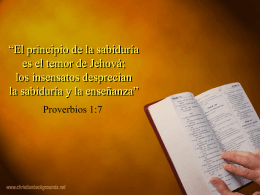 www.revistazo.com