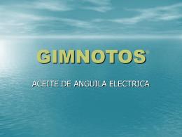 GIMNOTOS