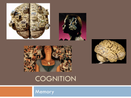 Cognition - Collin College