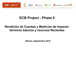 ECB, introduction, presentation, CARE UK, 2009