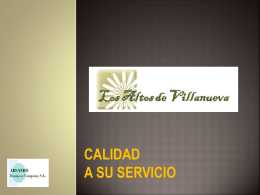 www.consvial.com