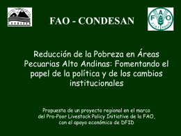 ROL AMBIENTAL DE CARE-PERU
