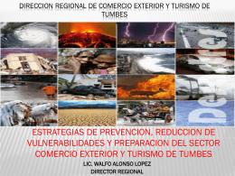 DIRECCION REGIONAL DE COMERCIO EXTERIOR Y …