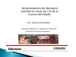 Diapositiva 1 - Buenos Aires