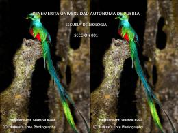 Diapositiva 1 - Eticabiologica