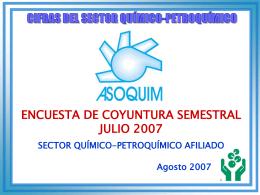 Encuesta de Coyuntura- Julio 2007
