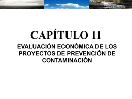 ECONOMIC EVALUATION OF POLLUTION PREVENTION …
