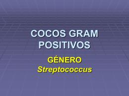 COCOS GRAM POSITIVOS - Facultad de Ciencias Veterinarias
