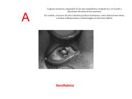 Diapositiva 1 - ieszoco-byg