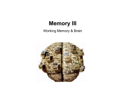 Syllabus P140C (68530) Cognitive Science