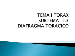 TEMA I TORAX SUBTEMA 1.3 DIAFRAGMA TORACICO