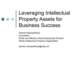 Intellectual Property Rights and Business Competitiveness