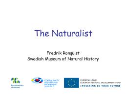 Databaser vid Naturhistoriska riksmuseet