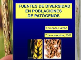 Genes de resistencia a roya de la hoja en cultivares de