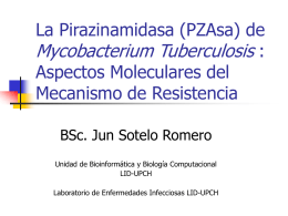 La Pirazinamidasa (PZAase) de Mycobacterium …