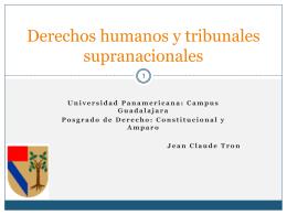 DH Trib Supranacionales