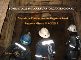 Cultura organizacional - Geco
