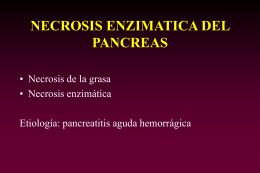 NECROSIS ENZIMATICA DEL PANCREAS