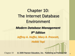The Internet Database Environment