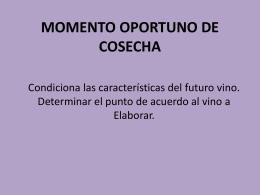 www.cpymeadeneu.com.ar