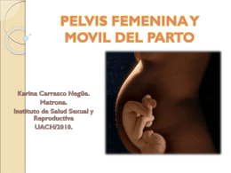 PELVIS FEMENINA Y MOVIL DEL PARTO