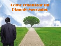 Como organizar plan de mercadeo