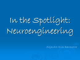 In the Spotlight: Neuroengineering