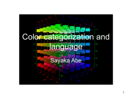 Issues on Perception and Categorization of Color