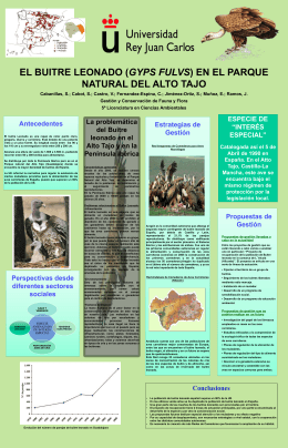 CBP's Powerpoint template for scientific posters