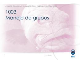 1003 Manejo de grupos
