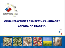 CHILEAN AGRICULTURE BIOTECNOLOGY POLICIES