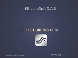 BROCHURE WSIAF