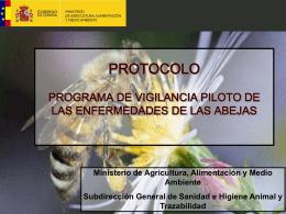 Vigilancia Influenza Aviar