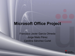Microsoft Office Project 2003