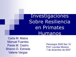 Investigaciones Sobre Resiliencia en Primates Humanos